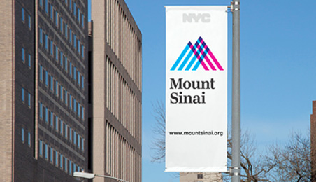 Mount Sinai Preconstruction